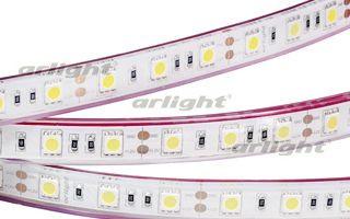 Arlight Лента 5 метров RTW 2-5000PGS 12V White 2x (5060, 300 LED, LUX) arlight лента rtw 2 5000pw 24v white 2x 5060 300led lux