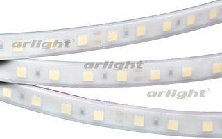 Arlight Лента 5 метров RTW 2-5000PW 12V Warm2700 2x (5060, 300 LED, LUX) arlight лента rtw 2 5000pw 24v white 2x 5060 300led lux