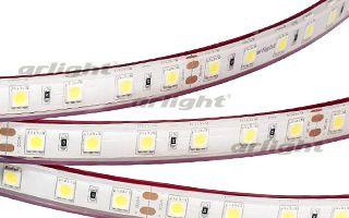 Arlight Лента 5 метров RTW 2-5000PGS 24V White 2x (5060, 300 LED, LUX) arlight лента rtw 2 5000pw 24v white 2x 5060 300led lux