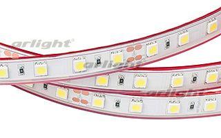 Arlight Лента 5 метров RTW 2-5000P 24V White6000 2x (5060, 300 LED, LUX) arlight лента rtw 2 5000pw 24v white 2x 5060 300led lux