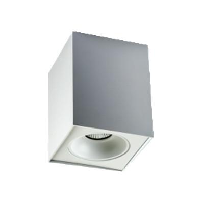MEGALIGHT 3161 WHITE megalight прожектор megalight 30w ip65 3000k yrw30 wl15