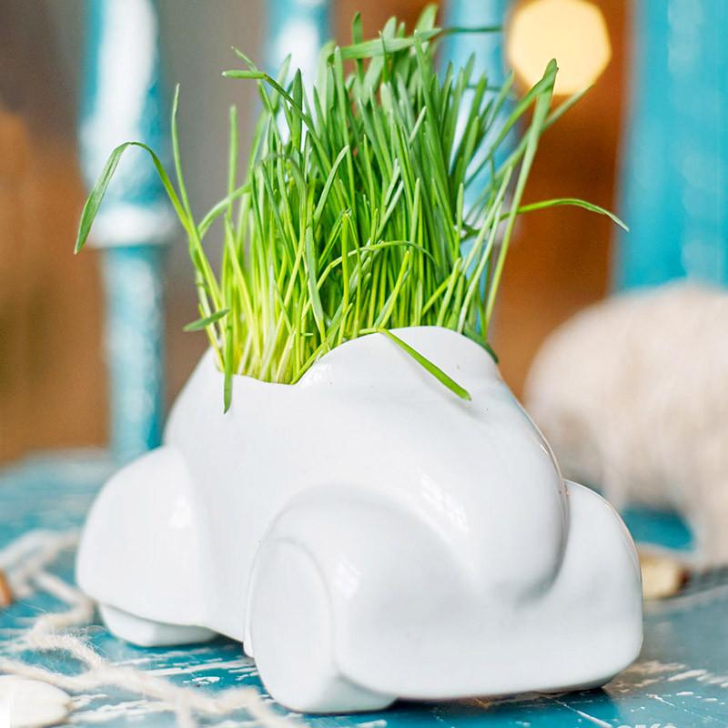 Экочеловеки Набор для выращивания eco машина набор для выращивания eco овечка 1040676
