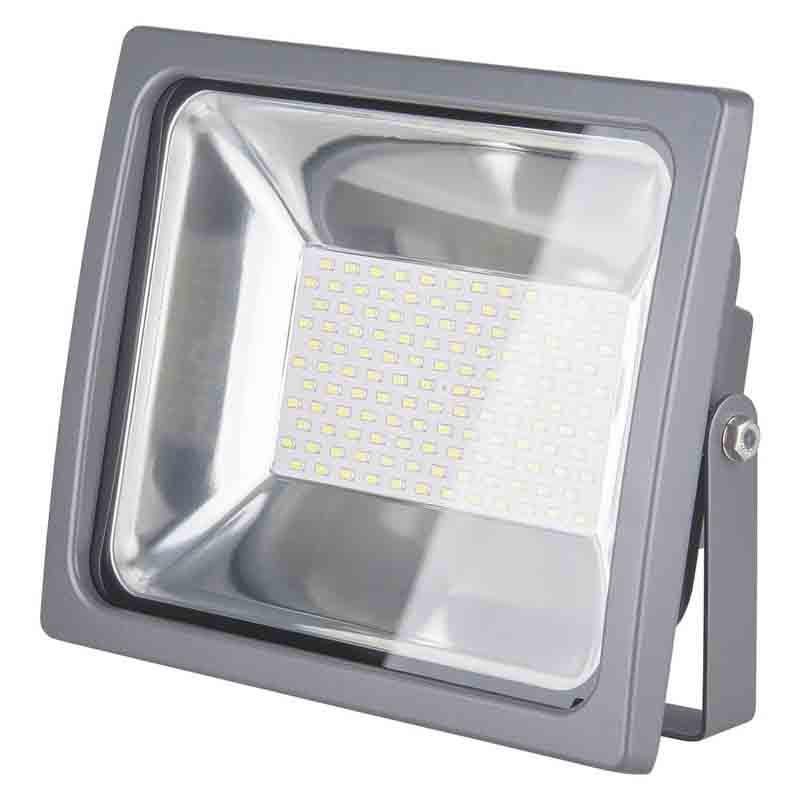 Elektrostandard 001 FL LED 100W elektrostandard лампа светодиодная elektrostandard свеча на ветру сdw led d 6w 3300k e14 4690389085505