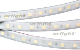 Arlight Лента 5 метров RTW 2-5000PW 24V White6000 2x (5060, 300 LED, LUX) arlight лента rtw 2 5000pw 24v white 2x 5060 300led lux