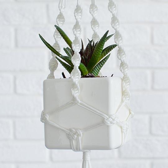 Экочеловеки Подвесное кашпо куб растение экочеловеки eco совы 5001 3шт