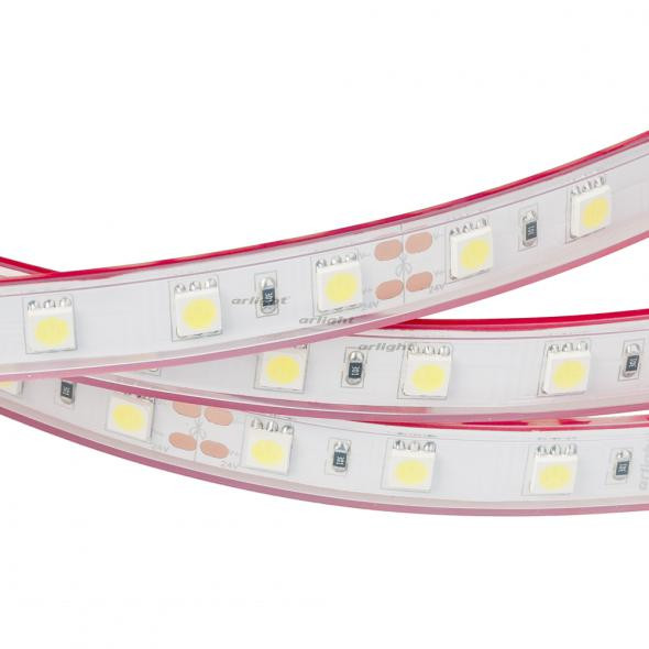 Arlight Лента 5 метров RTW 2-5000P 24V White6000 2x (5060, 300 LED, LUX) лента arlight 015702